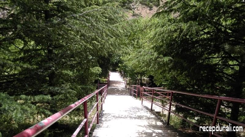 Barla Cennet Bahçesi