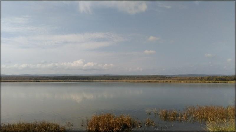 Mert Gölü