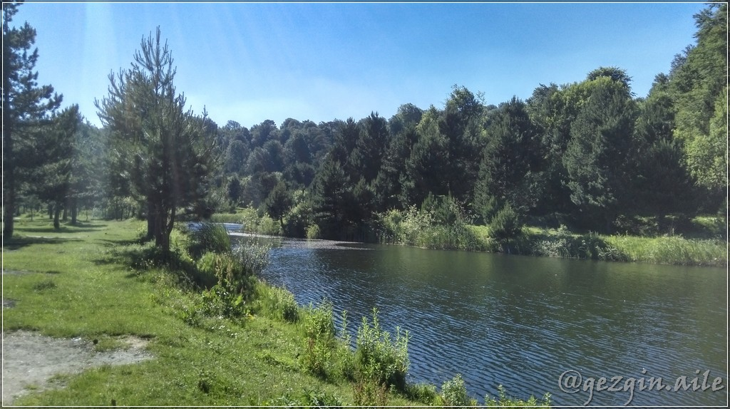 Palazoğlu Göleti